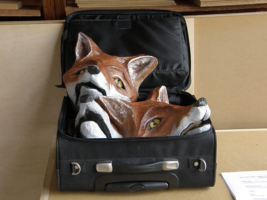 Geoffrey Navias' foxes in a suitcase
